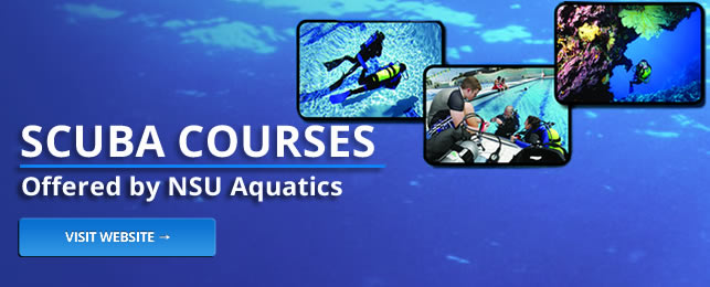 Scuba courses offered by the NSU Aquatics program